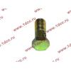 Болт пустотелый М10х1,0 (штуцер топливный) H HOWO (ХОВО) 81500070054 фото 3 Шахты